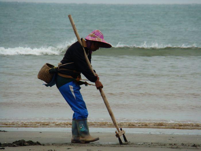 用一把耙子,在海边沙滩上一拖,沙虫,白蛤,生蚝